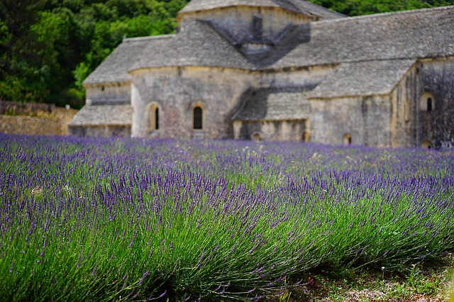 lavender-1275377_640